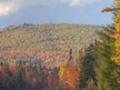 Seasonal-Fall_HDR03